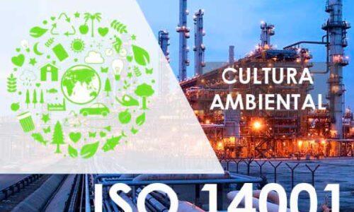 iso 14001 desarrollar una cultura ambiental